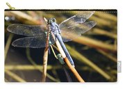 Three Dragonflies On One Reed Carry-all Pouch