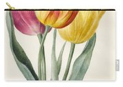 Three Lily Tulips  Carry-all Pouch
