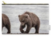 Three Little Bears Carry-all Pouch