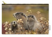 Three Marmots 2 Carry-all Pouch