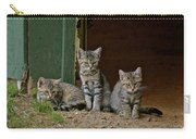 Three Musketeers  Carry-all Pouch