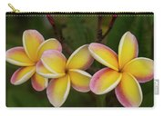 Three Pink And Yellow Plumeria Flowers - Hawaii Carry-all Pouch