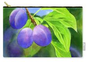Three Purple Plums With Background Carry-all Pouch