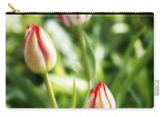 Three Striped Tulips Carry-all Pouch