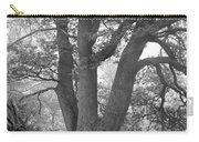 Three Trunk Tree, Whitley Mill Carry-all Pouch