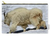 Through The Snows Carry-all Pouch