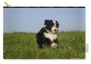 Tibetan Terrier Puppy Carry-all Pouch