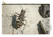 Tiger Beetle Looking For Prey On A Stone Carry-all Pouch