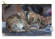 Tiger Dog And The Buskers Carry-all Pouch