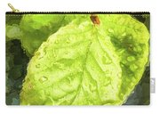 Time Travel Summer Leaves Carry-all Pouch
