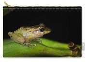 Tink Frog Diasporus Diastema Carry-all Pouch