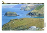 Tintagel Carry-all Pouch