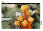 Tiny Orange Mushrooms Carry-all Pouch