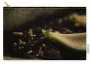 Tiny Succulent Carry-all Pouch