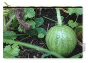 Tiny Watermelon Carry-all Pouch
