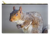 Tired Squirrel And Fly Carry-all Pouch