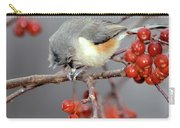 Titmouse Breakfast Carry-all Pouch