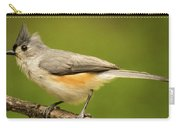 Titmouse With Bad Hairdo 3 Carry-all Pouch