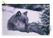 T.kitchin, 19552c Gray Wolf, Winter Carry-all Pouch