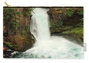 Toketee Falls 4 Carry-all Pouch