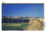 Toledo City Carry-all Pouch