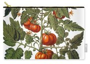 Tomato & Watermelon 1613 Carry-all Pouch