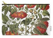 Tomato, 1613 Carry-all Pouch