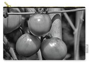 Tomatoes On The Vine Bw Carry-all Pouch