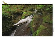 Tompkins Falls Catskills N.y.-7 Carry-all Pouch
