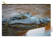 Toothy Gator Carry-all Pouch