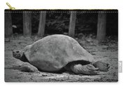 Tortoise Relaxing Carry-all Pouch