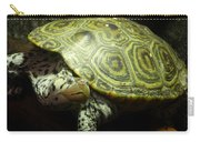 Turtle With A Tale To Tell Carry-all Pouch