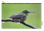 Totally Wet But Beautiful - Ruby-throated Hummingbird Carry-all Pouch