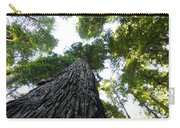 Towering California Redwood Trees Carry-all Pouch