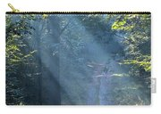Trail In Morning Light Carry-all Pouch