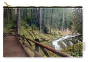 Trail Over Sol Duc Falls Bridge In Olympic National Park Carry-all Pouch