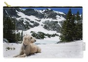 Traildog In Snow At Missouri Lakes Carry-all Pouch