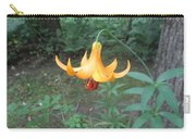 Tranquil Woods Carry-all Pouch