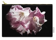 Transparency Carry-all Pouch by Helga Novelli