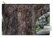 Treaty Oak 12 14 2015 039 Carry-all Pouch