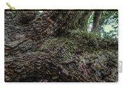 Treaty Oak 12 14 2015 042 Carry-all Pouch