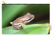 Tree Frog Close-up 01110 Carry-all Pouch