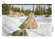 Tree Shadows On Snow Carry-all Pouch