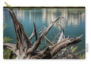 Tree Stump On The Northern Shore Of Jackson Lake At Grand Teton National Park Carry-all Pouch