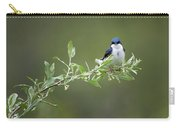 Tree Swallow Male Carry-all Pouch