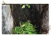 Tree Trunk Still Life Carry-all Pouch