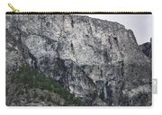 Trees And Flat Peak Carry-all Pouch
