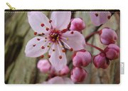 Trees Art Prints Canvas Pink Blossoms Spring Blue Sky Baslee Troutman Carry-all Pouch