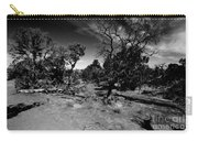 Trees Of Canyon Lands Carry-all Pouch