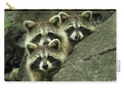 Tres Banditos Carry-all Pouch